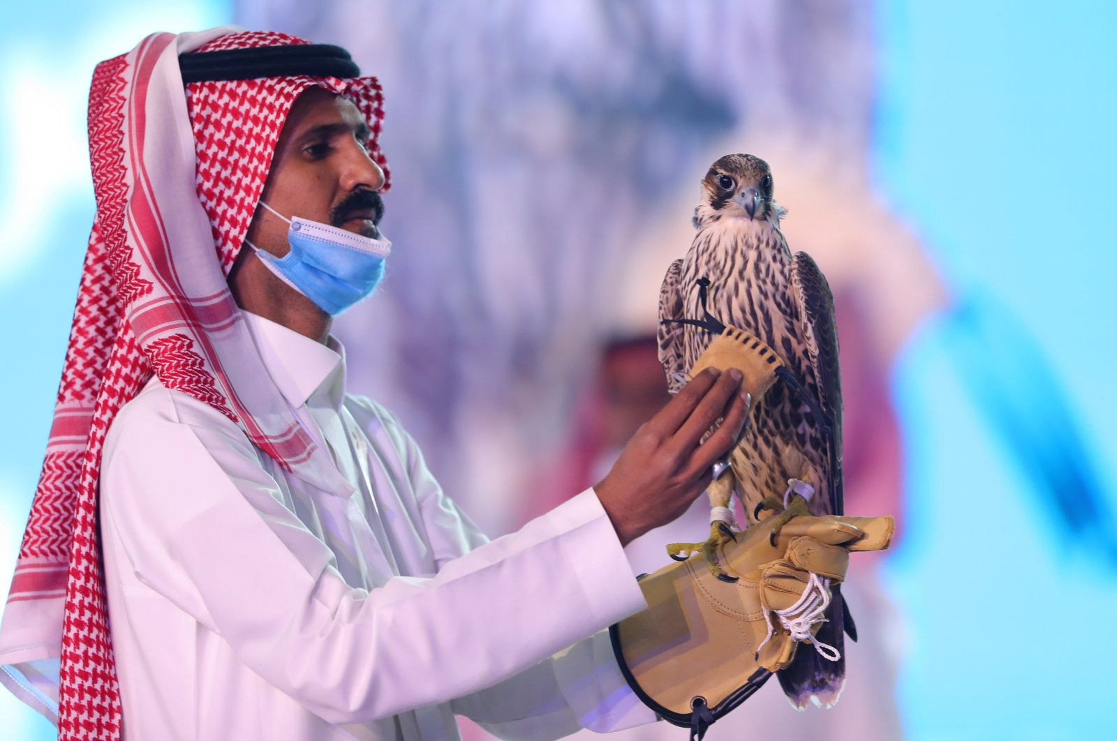 Falcon Fetches